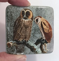 "Hoot and Hoot 2"" square"