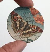 """Butterfly 6 1.5"""" matte"""