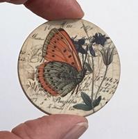 """Butterfly 4 1.5"""" matte"""