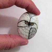 Owl 15