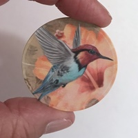 Hummingbird peach